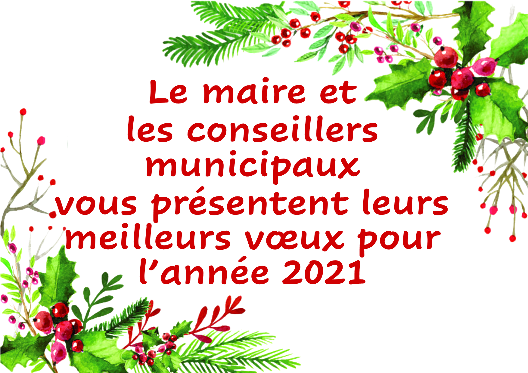 Cddvoeux2021